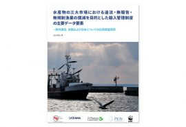 CDS-Study-WEB-Nov-2020_JP